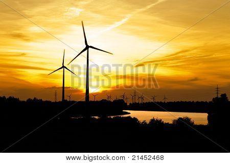 Wind turbine farm over sunset
