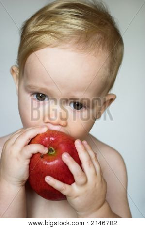 Toddler Eating Apple