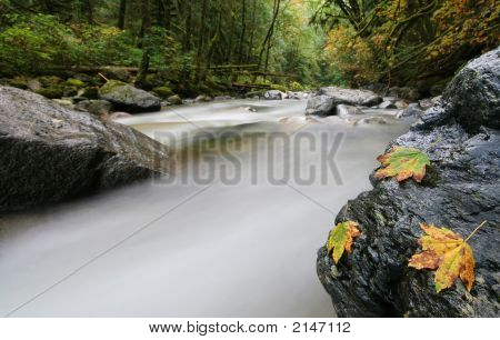 Stawamus River