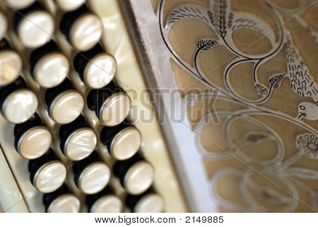 Accordion Close Up