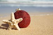 closeup of an elegant red christmas ball and a starfish in the sand of a beach, next to the seashore poster
