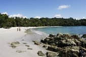 Beach in Manuel Antonio National Park (Costa Rica) poster