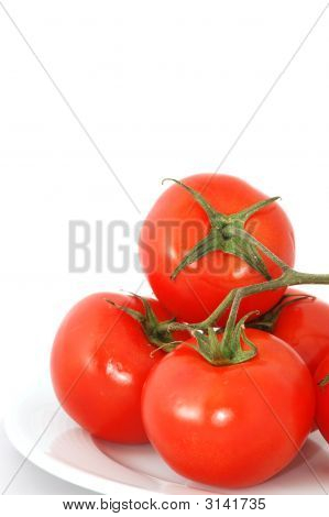 Tomato Branch Isolated On White