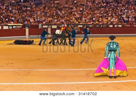 Matador And Dead Bull In Bullfighting At Madrid