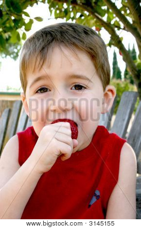 Boy Eating Strawberry
