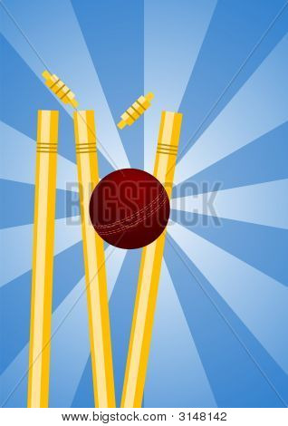 Cricket Wickets 1