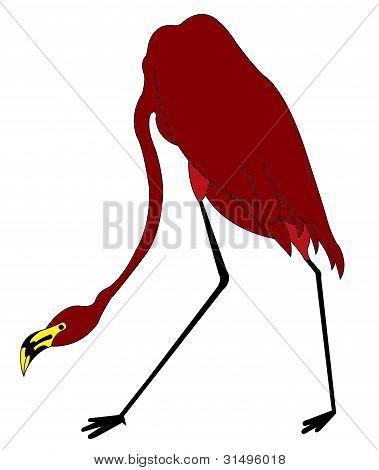 Illustration of colorful flamingo
