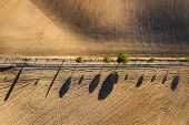 Abstract Drone View Of Famous Tuscan Hills In San Quirico Dorcia, Italy - Empty Agricultural Fields  poster