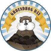 stock photo of groundhog  - Vector illustration of a cute groundhog popping out of a hole - JPG