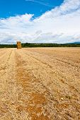 foto of briquette  - Briquettes of Dry Hay in a Field in Southern France - JPG
