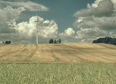 Cheap Energy. Wind Energy Turbines In Wheat Field With Blue Sky, Renewable Electric Energy Source, G poster