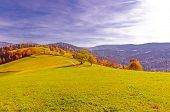 Autumn In The Beskidy Mountains, Poland.  Colorful Trees Along The Winding Path With A View To The V poster