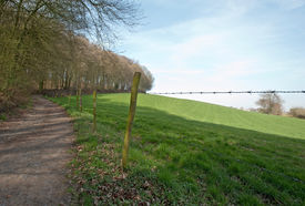 picture of barbed wire fence  - Unpaved road through forest and meadow in spring - JPG