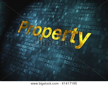 Business concept: Property on digital background
