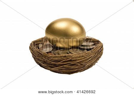 Golden Nest Egg Laying On Coins Isolated