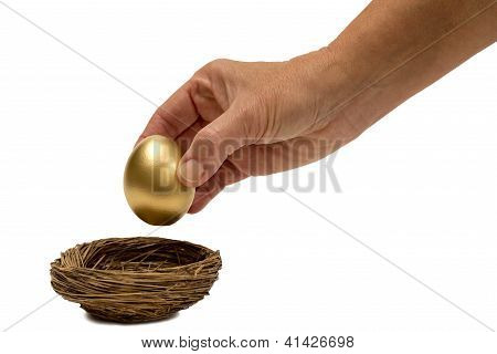 Putting Golden Egg In Nest Isolated On White