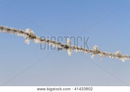 Hoar Frost On Barbed Wire Against A Blue Sky