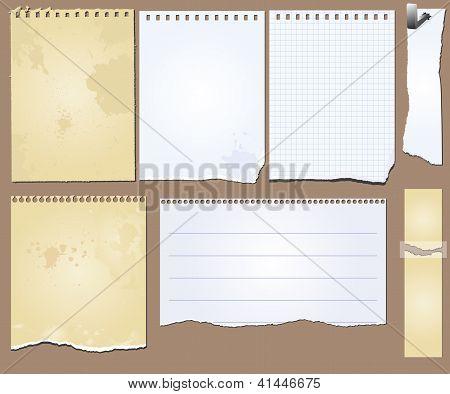 Vector Grunge Scrapbook Elements