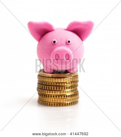 Little Pink Pig  On Coins