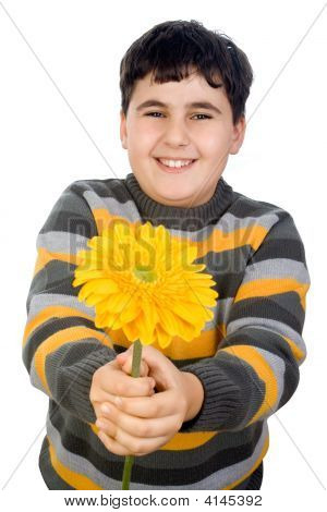 Happy Boy With Gerbera Daisy