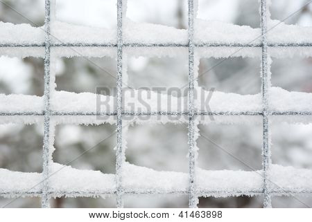 Snow Covered Latticed Fence