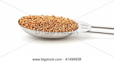 Mustard Seeds Measured In A Metal Tablespoon
