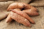 stock photo of root-crops  - Fresh Organic Orange Sweet Potato against a background - JPG