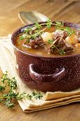 foto of boeuf  - Traditional french beef goulash  - JPG