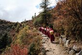 foto of sherpa  - sherpa women carrying potatoes in sacks on there backs - JPG