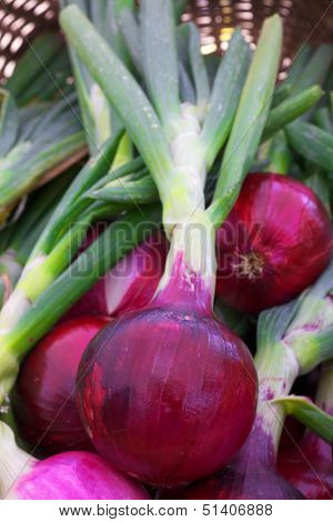 Pile of Red onions at the farmers market