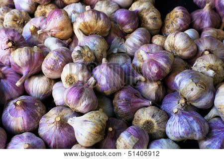 Pile of Purple Italian Garlic at the farmers market