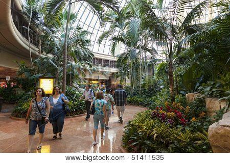Mirage Hotel Atrium In Las Vegas, Nv On June 26, 2013