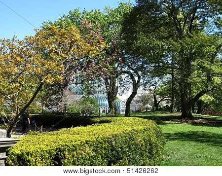 Beautiful landscaped trees in spring at Brooklyn Botanical Gardens