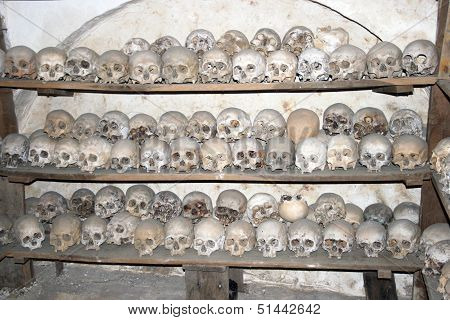 Skulls of Deceased Monks