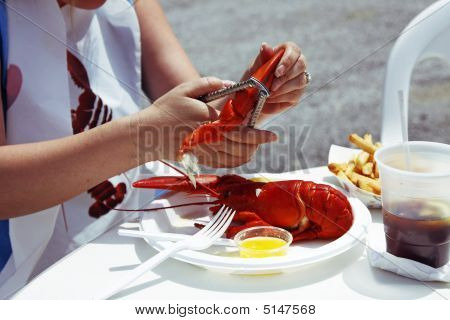 Lobster Cracking