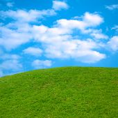 stock photo of blue sky  - beautiful springtime landscape green grass blue sky nature scenic - JPG