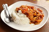 pic of curry chicken  - spicy chicken curry and rice on dish - JPG