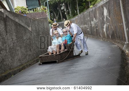 People  Riding Sled In Madeira