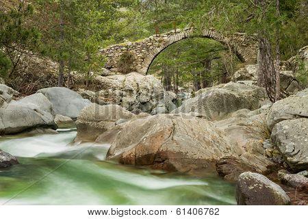 Genoese Bridge Over Tartagine River In Northern Corsica