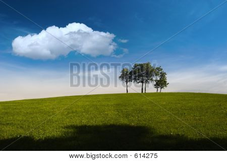 Summer, Trees, Hill And Blue Sky