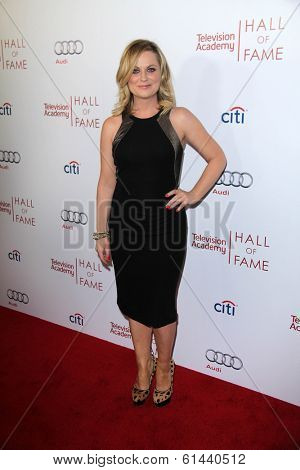 LOS ANGELES - MAR 11:  Amy Poehler at the Television Academy's 23rd Hall Of Fame Induction Gala at Beverly Wilshire Hotel on March 11, 2014 in Beverly Hills, CA