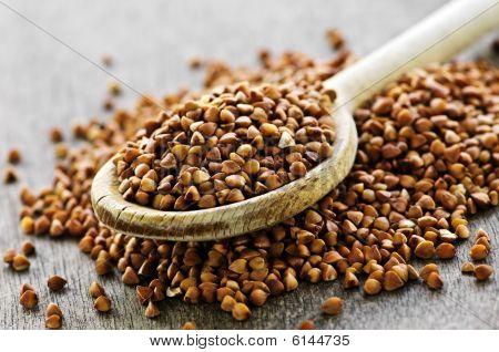 Buckwheat Grain