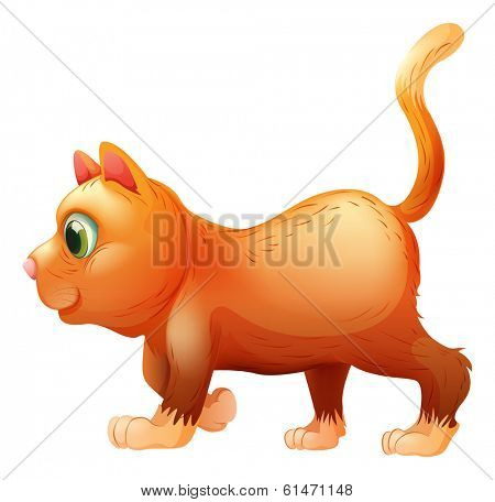 Illustration of a sideview of a fat cat on a white background