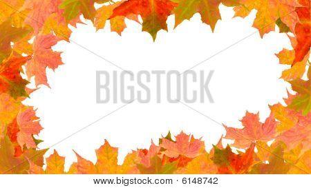 Autumn Border