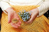 stock photo of forget me not  - Elderly woman holds forget - JPG