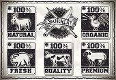 Vintage Page for Butcher Shop Labels