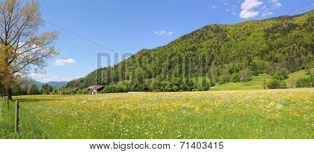 Hillside And Pasture, Rottach Valley, Germany