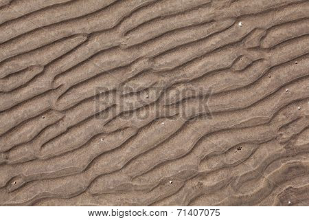 Pattern of the sandy ocean floor at low tide