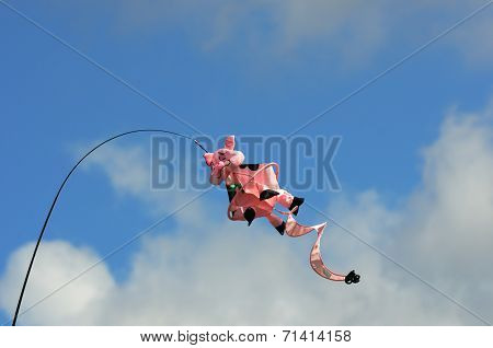 Novelty pig kite flying