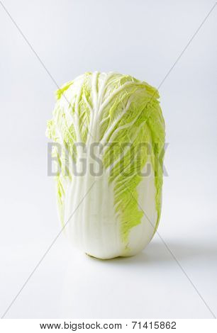 head of chinese cabbage on white background